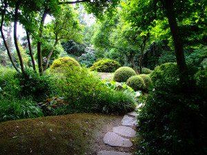 Praha,_Troja,_Botanická_zahrada,_Japonská_zahrada